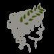 kallisti-logo-small